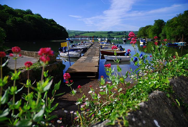 pontoon-through-flowers