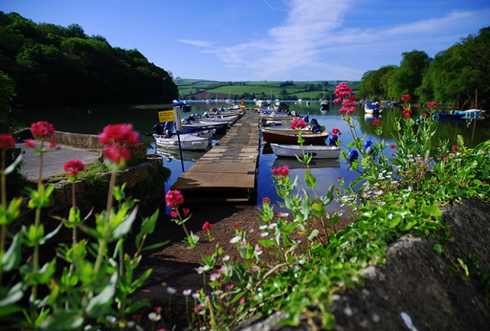pontoon-through-flowers